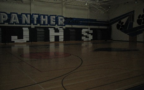 Panther Graphic Gym
